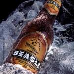 Cerveza Beagle de Tierra del Fuego